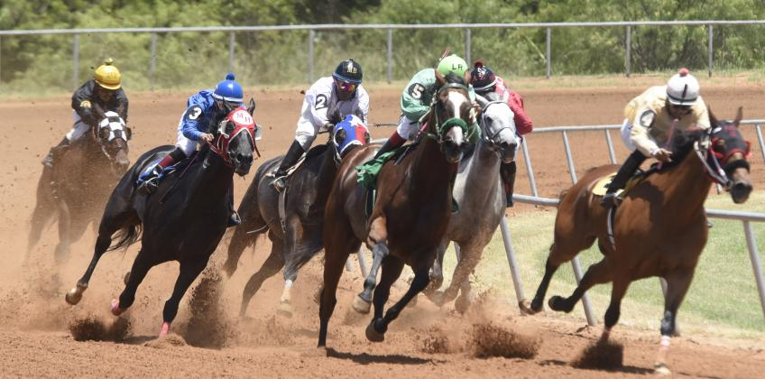 Horses round the curve in one of two longer races on the program Saturday afternoon at the Gillespie County Fair Grounds. In all, 16 races were run on Saturday and Sunday as part of the July Fourth Racing Festival. Three more meets are planned this summer on July 18-19, Aug. 8-9 and Aug. 22-23 as part of the 132nd Gillespie County Fair (Aug. 20-23). — Standard-Radio Post/Yvonne Hartmann